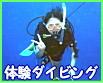 サムイ島 体験ダイビング